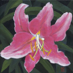 "Title: ""Lily #2"" / Acrylic on canvas, by NH artist Denise Clark"